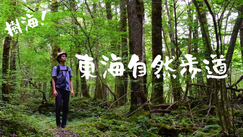 東海道自然歩道をハイキング!ソロキャンプで楽しむソロハイク!山道編