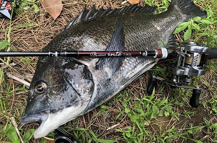 【チニング編】4人の釣りキチが愛用するチヌルアーをガチプレゼン