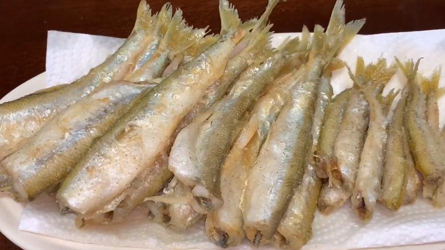 チカってどんな魚?北海道で盛んなチカ釣りをチェック!おすすめのタックルや釣り方特集