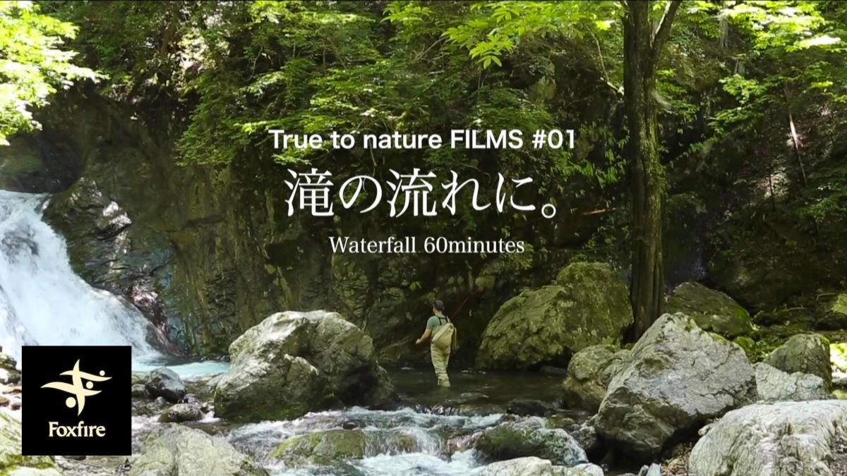 【お昼寝に】自然の映像と音が流れるだけの1時間。Foxfire『True to nature FILMS』