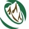 山好きのためのエンタメ情報サイト|マウンテンシティ