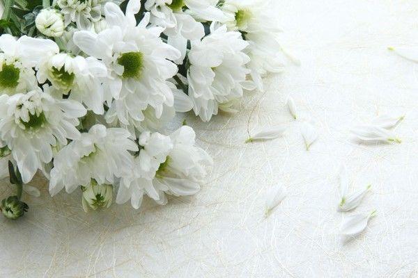葬儀費用の相場、内訳、安く抑える方法など解説