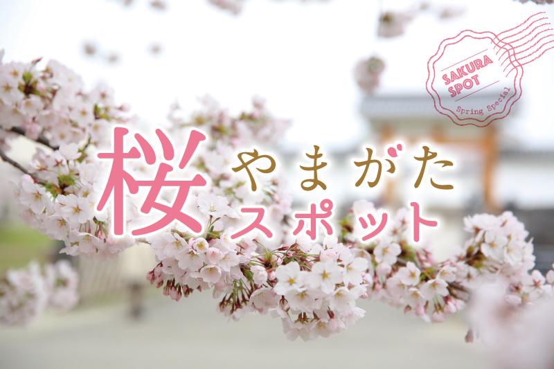 心ときめく桜の風景に癒されてみませんか。
