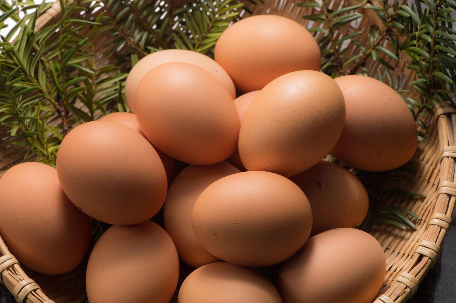 インターンシップ参加者募集中!【ベトナム・新卒・2018年4月入社】おいしく安全・新鮮な「卵」を武器に、日本・アジアの畜産業を進化させる会社!
