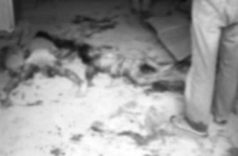 Lalaki minasaker ang kaniyang asawa at 2 anak sa San Andres, Romblon