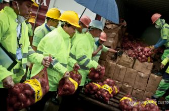 The Bureau of Customs has seized P4.5 million worth of smuggled onions from China, the agency said in a statement issued on Monday, June 11./BOC/