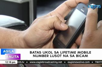 Bicam approves bill that will enable use of same cellphone number for life