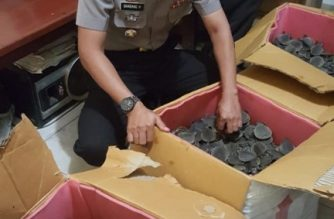 In this picture taken on March 14, 2019 shows an Indonesian police inspects boxes full of endangered pig-nosed turtles in Merauke, Papua province, they seized from a smuggler. - An Indonesian man has been arrested for trying to smuggle 2,000 endangered pig-nosed turtles, police said, marking the latest wildlife-trafficking arrest as the Southeast Asian nation battles the vast trade. (Photo by ABDUL SYAH / AFP)