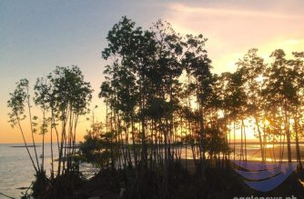 "Trees at sunset in Donsol, Sorsogon.  (Photo by Eagle News photo correspondent Alvin ""Zaijian Chu"" Melitante in Sorsogon/Eagle News Service)"