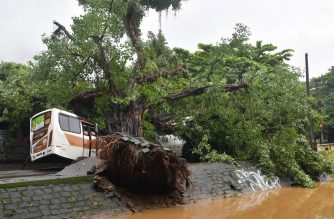 View of a bus underneath a fallen tree after heavy rain inundated parts of Rio de Janeiro, Brazil, on April 9, 2019. - Flash floods caused by torrential rain killed at least three people in Rio de Janeiro, officials said Tuesday, as emergency workers raced to rescue people trapped in buses, cars and buildings. (Photo by CARL DE SOUZA / AFP)