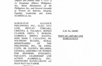 SC issues writ of amparo, habeas data for Karapatan, Gabriela, RMP