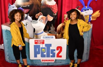 "ATLANTA, GEORGIA - JUNE 03: Dannah Lockett and Dani Lockett attend ""The Secret Life of Pets 2"" Special Screening hosted by 2 Chainz and Trappy S. Goyard at Regal Cinemas Atlantic Station on June 03, 2019 in Atlanta, Georgia.   Paras Griffin/Getty Images for Universal/AFP"