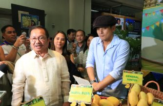 A photo of the metro-wide marketing and promotional campaign for Philippine mangoes is posted by Agriculture Secretary Manny Piñol on his facebook page. (Courtesy Manny Piñol Facebook page)