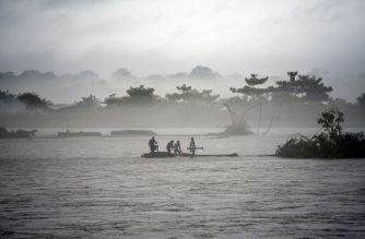 In this picture taken on July 15, 2019, Indian men catch a tree in the flooded Manas river, following heavy rainfall in Baksa district of Assam, in the North-Eastern states of India. - Torrential monsoon rains swept away homes and triggered landslides across South Asia, affecting millions of people and spiking the death toll to at least 180, officials said on July 16. (Photo by David TALUKDAR / AFP)