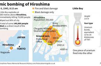 Japan urged to sign UN nuke ban on Hiroshima anniversary