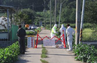 South Korean quarantine officials set a barricade on a road to block people from entering in an area where pigs were confirmed to have been infected with African swine fever in Paju on September 17, 2019. - South Korea on September 17 reported its first cases of African swine fever, becoming the latest country hit by the disease that has killed pigs from China to North Korea, pushing up pork prices worldwide. (Photo by - / YONHAP / AFP) / - South Korea OUT / REPUBLIC OF KOREA OUT  NO ARCHIVES  RESTRICTED TO SUBSCRIPTION USE