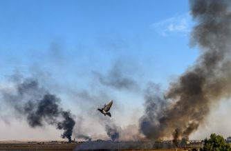 "Smoke rises from the Syrian town of Tal Abyad, in a picture taken from the Turkish side of the border where a pigeon is seen in Akcakale on October 10, 2019, on the second day of Turkey's military operation against Kurdish forces. - Turkey has vowed to destroy the Syrian Kurdish People's Protection Units (YPG) which controls much of northeastern Syria, and set up a ""safe zone"" for the return of Syrian refugees. A total of 70 people were so far reported injured across Turkish areas. Families were evacuating and streets emptying in Akcakale, as local authorities called on people to take shelter. (Photo by BULENT KILIC / AFP)"