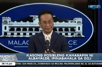 Malacanang to let DOJ determine whether Albayalde should be charged criminally