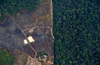 Aerial picture showing a deforested piece of land in the Amazon rainforest near an area affected by fires, about 65 km from Porto Velho, in the state of Rondonia, in northern Brazil, on August 23, 2019. - Bolsonaro said Friday he is considering deploying the army to help combat fires raging in the Amazon rainforest, after news about the fires have sparked protests around the world. The latest official figures show 76,720 forest fires were recorded in Brazil so far this year -- the highest number for any year since 2013. More than half are in the Amazon. (Photo by Carl DE SOUZA / AFP)