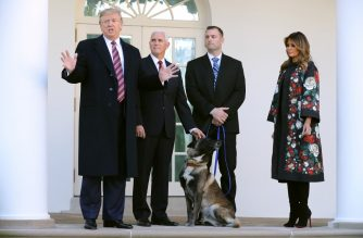 WASHINGTON, DC - NOVEMBER 25: U.S. President Donald Trump, Vice President Mike Pence, an unidentified dog handler and first lady Melania Trump pose for photographs with Conan, the U.S. military K9 that assisted in the raid that killed ISIS leader Abu Bakr al-Baghdadi, on the Rose Garden colonnade at the White House November 25, 2019 in Washington, DC. Trump talked about how the dog was a hero and said he presented the animal with a medal and a plaque.   Chip Somodevilla/Getty Images/AFP