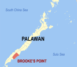 At least four cops hurt in clash with suspected NPA rebels in Palawan
