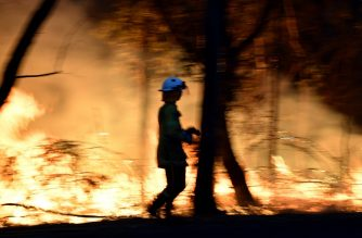 This photo taken on December 7, 2019 shows firefighters conducting back burning measures to secure residential areas from encroaching bushfires at the Mangrove area, some 90-110 kilometres north of Sydney. - Bushfires are common in the country but scientists say this year's season has come earlier and with more intensity due to a prolonged drought and climatic conditions fuelled by global warming. (Photo by SAEED KHAN / AFP)