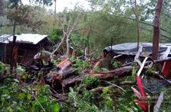 Typhoon Kammuri (TisoyPH) toppled big trees and damaged several structures after pummeling Masbate Monday night, Dec. 2, until Tuesday dawn, Dec. 3.  Photo taken Tuesday morning, Dec. 3, 2019, by Eagle News Service correspondent Ems Cajurao. (Eagle News Service)