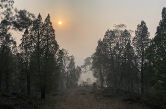 Sun rises over the bushland of Cooma hill resort, some 114 kilometres south of Canberra on January 4, 2020. - Australia's military launched the seaborne evacuation of hundreds of people trapped in a southeastern town as the country braced for yet more catastrophic bushfire conditions. (Photo by SAEED KHAN / AFP)