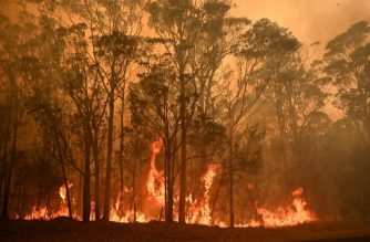 A bushfire burns in the town of Moruya, south of Batemans Bay, in New South Wales on January 4, 2020. - Up to 3,000 military reservists were called up to tackle Australia's relentless bushfire crisis on January 4, as tens of thousands of residents fled their homes amid catastrophic conditions. (Photo by PETER PARKS / AFP)