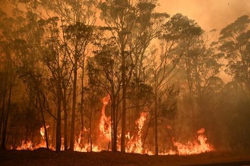 Bush fire raging through Australia