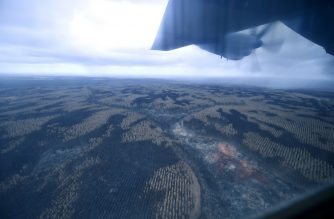 The burnt landscape is seen from an Australian Defence Force (ADF) C-130 Hercules aircraft over Kangaroo Island on January 16, 2020. - The ADF transported firefighters from Adelaide to Kangeroo Island after bushfires ravaged the island off of the south coast of Australia. (Photo by PETER PARKS / AFP)