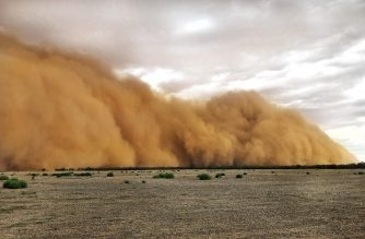 "This handout photo taken on January 17, 2020 and received on January 20 courtesy of Marcia Macmillan shows a dust storm in Mullengudgery in New South Wales. - Dust storms hit many parts of Australia's western New South Wales as a prolonged drought continues. (Photo by Handout / Courtesy of Marcia Macmillan / AFP) / RESTRICTED TO EDITORIAL USE - MANDATORY CREDIT ""AFP PHOTO / Courtesy of Marcia Macmillan"" - NO MARKETING NO ADVERTISING CAMPAIGNS - DISTRIBUTED AS A SERVICE TO CLIENTS --- NO ARCHIVE ---"