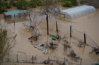 A flooded garden is pictured in Malgrat de Mar, near Girona on January 22, 2020, as storm Gloria batters Spanish eastern coast. - A winter storm which has killed three people lashed much of eastern Spain, cutting power, forcing the closure of schools and severing road and rail links. National weather agency Aemet placed most of northeastern Spain on alert because of the storm packing gusts of over 100 kilometres (60 miles) per hour, heavy snowfall, freezing rain and massive waves which smashed into seafront promenades, damaging shops and restaurants. (Photo by Josep LAGO / AFP)