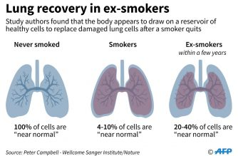 Turn back time: how quitting smoking reverses lung cell damage