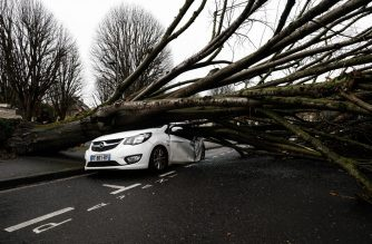 A picture taken on February 16, 2020 shows damaged cars as a tree fell down after being hit by strong winds in Caen, after storm Dennis swept accross northwestern France, leaving around 18.500 houses without electricity. (Photo by Sameer Al-DOUMY / AFP)