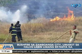 At least 15 hectares affected by raging bushfire in Zamboanga City
