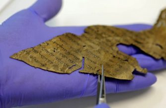 A conservator of the Israel Antiquities Authority (IAA) shows fragments of the Dead Sea Scrolls at their laboratory in Jerusalem on June 2, 2020. - DNA research on the Dead Sea Scrolls has revealed not all of the ancient manuscripts came from the desert landscape where they were discovered, according to a study published today. Numbering around 900, the manuscripts were found between 1947 and 1956 in the Qumran caves above the Dead Sea in the West Bank. The parchment and papyrus scrolls contain Hebrew, Greek and Aramaic and include some of the earliest-known texts from the Bible, including the oldest surviving copy of the Ten Commandments. Research on the texts has been ongoing for decades and in the latest study, DNA tests on manuscript fragments indicate that some were not originally from the area around the caves. (Photo by MENAHEM KAHANA / AFP)
