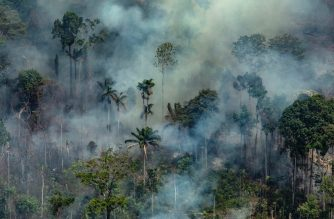 "Handout aerial picture released by Greenpeace showing smoke billowing from the Jamanxim National Forest - APA (Environmental Protection Area) - in the Amazon biome in the municipality of Novo Progresso, Para State, Brazil, on August 23, 2019. - Hundreds of new fires are raging in the Amazon rainforest in northern Brazil, official data showed on August 24, 2019, amid growing international pressure on President Jair Bolsonaro to put out the worst blazes in years. The fires in the world's largest rainforest have triggered a global outcry and are dominating the G7 meeting in Biarritz in southern France. (Photo by Victor MORIYAMA / GREENPEACE / AFP) / RESTRICTED TO EDITORIAL USE - MANDATORY CREDIT ""AFP PHOTO / GREENPEACE / VICTOR MORIYAMA"" - NO MARKETING - NO ADVERTISING CAMPAIGNS - DISTRIBUTED AS A SERVICE TO CLIENTS"