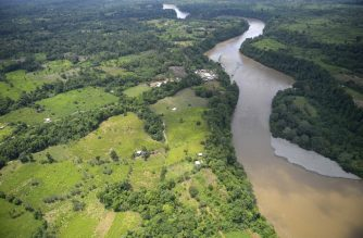 This aerial view shows coca fields in Tumaco, Narino Department, Colombia, on February 26, 2020. - Colombia's Defense Minister said on February 24 that the military will step up an offensive against drug trafficking gangs responsible for clearing thousands of hectares of protected national parks for coca plantations. The South American country is the largest producer of cocaine in the world, and much of it is destined for the US market. (Photo by Raul ARBOLEDA / AFP)