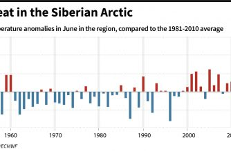 Tie for warmest June globally, Siberia sizzles: EU