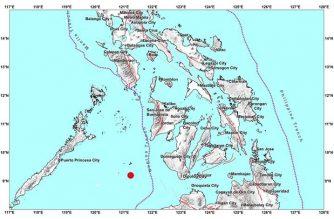 4.3-magnitude quake hits Negros Occidental