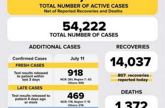 COVID-19 cases in the Philippines breached the 54000 mark on Saturday, July 11. The DOH also reported in one day a record-high of 807 recoveries./DOH/