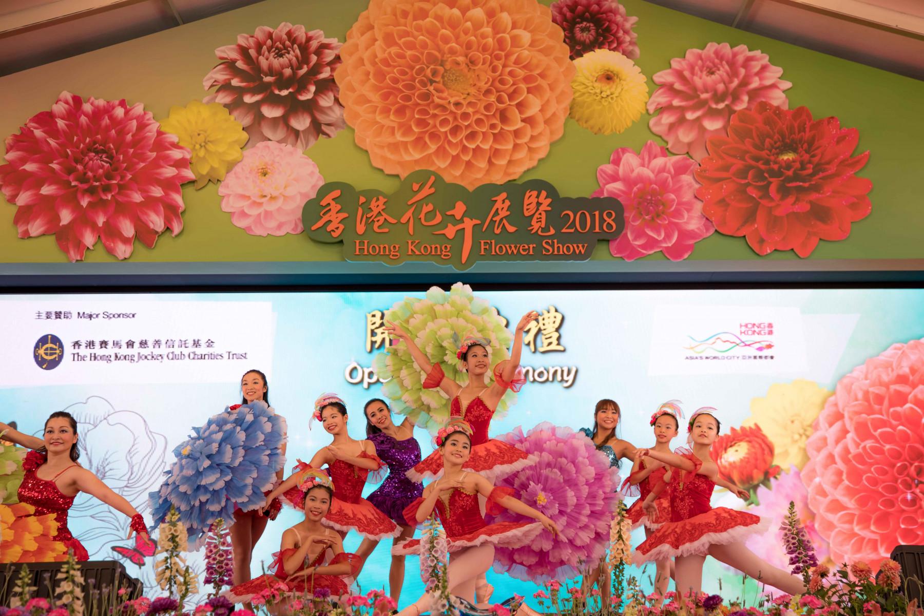 Play Concept - Hong Kong Flower Show 2018 - 1