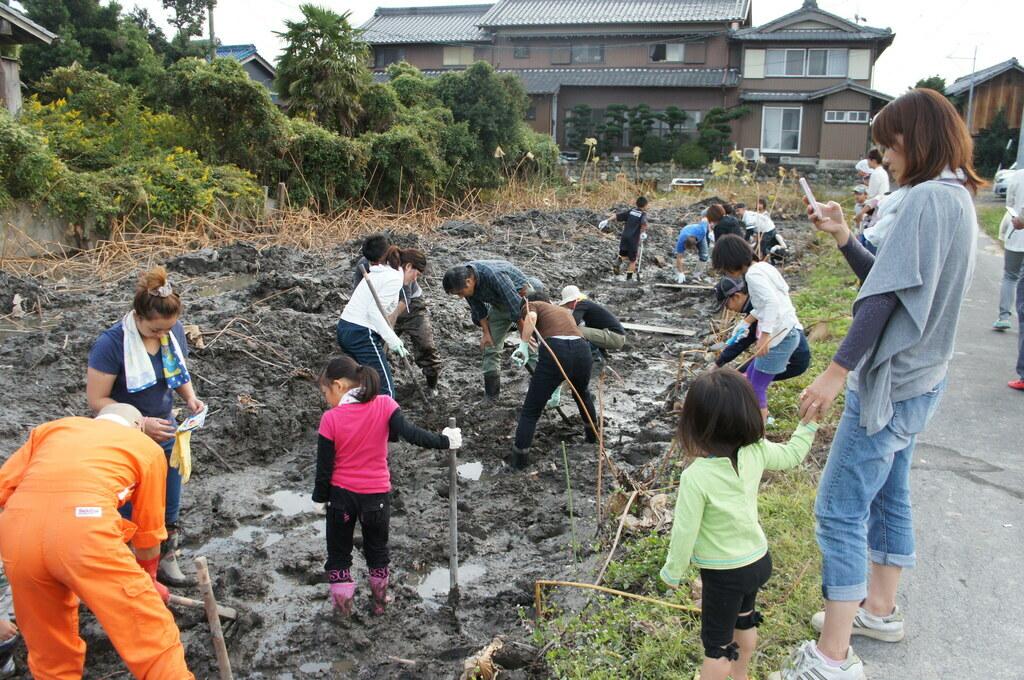 田名部家では1本ずつ丁寧に手掘りで収穫しています