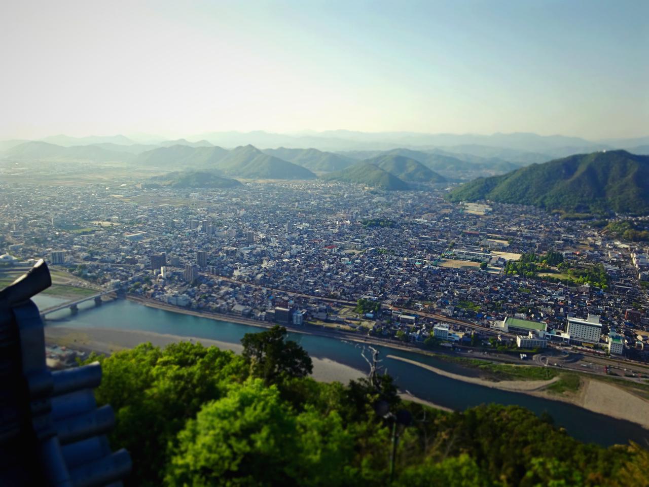 金華山展望公園の画像
