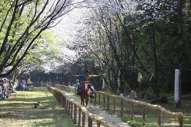宮崎神宮 神事流鏑馬の画像