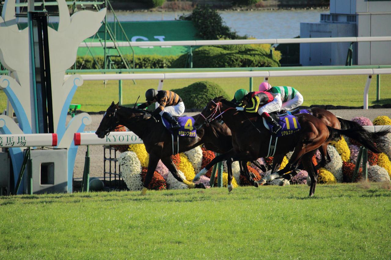 京都競馬場Image