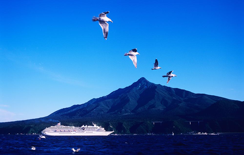 美しい日本を巡る