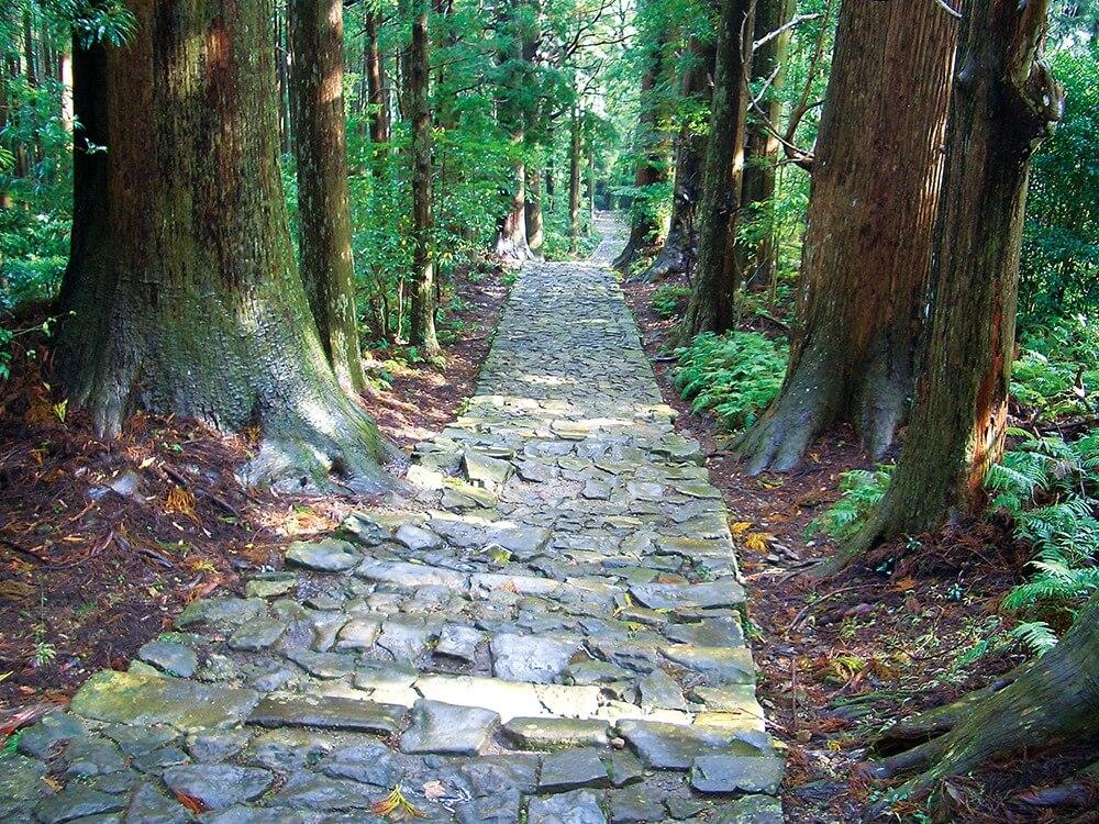 いにしえの権力者たちも目指した熊野三山へ