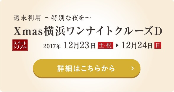 Xmas横浜ワンナイトクルーズD